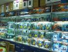 """漯河专业组装电脑 """"升级电脑,正品行货质量保证,全市最低价"""