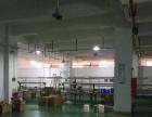 寮步井巷一楼1200平厂房招租带装修