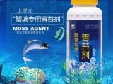 螃蟹塘专用清苔剂 水产清苔剂供应 不上水草 安全 高效
