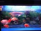 森森1.2米鱼缸