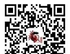 上海英武宝山馆散打搏击优惠多多