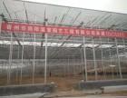 山东瀚海温室园艺工程有限公司