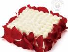 济宁梁山麦喀隆私家蛋糕裱花烘焙技术培训指导学习
