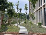 大汉园林设计-东莞庭院花园-园林景观-园林设计-绿化养护公司