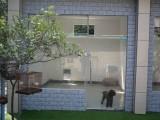 广州有素宠物训练学校 狗狗训犬基地 可上门接送