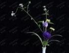 泉州学花艺的好学校,插花培训班,教你开自己的花店