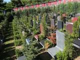 北京市昌平区,天寿陵园环境如何树葬价格