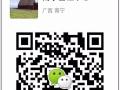 芜湖专业代办越南签证-芜湖代办东南亚签证-广西签证中心