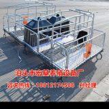 湖南母猪产床价格是多少钱 养猪设备厂家直销 镀锌管猪产床价格
