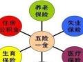 北京市企业薪税保金连锁服务 社保代理 社保代办