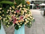 订鲜花开业花篮 绿植 同城配送生日送鲜花礼盒