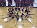 华翎舞蹈总校专业成人零基础培训 包教包会包安排工作