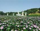 东莞周边体验较佳的农家乐推荐-松湖生态园休闲一日游