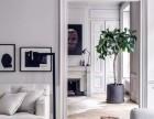 健康时尚个性智能 客制化全案设计 家居室内装修设计