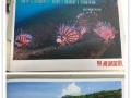 南湖国旅 非同凡享 旅行社兼职 旅游达人 推广奖励
