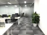广州佛山绿植租摆办公室植物租赁绿植租摆犸蚁园艺