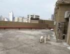 鹭金御公馆 精装三房两厅两卫 带超大露台 全新装修 实地勘察