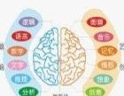 七田阳光7-12岁全脑综合智能培训全面提升学习力