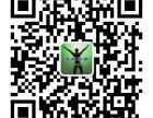 专业网站建设维护网页制作