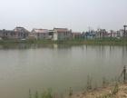 兴仁镇鱼塘 土地 30000平米