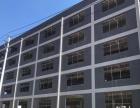 咸安高新区全新厂房出租 可分割