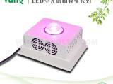 深圳市泛科科技有限公司 植物生长灯生产厂家