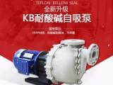 磷化液输送泵 国宝耐酸碱水泵 安全好用无泄漏