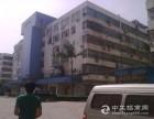 布吉秀峰工业城旧改厂房整层出售