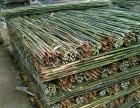 张家口竹竿,竹片,菜架竹,园林绿化支撑杆