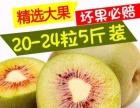 四川蒲江红心猕猴桃