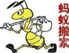 广州越秀五羊新城搬家居民搬家公司搬迁广州蚂蚁搬家