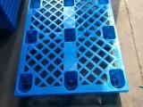 山東九腳塑料托盤廠家直銷九腳平板托盤網格尺寸齊全山東托盤圖片
