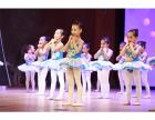 佛山成人舞蹈培训,佛山芭蕾舞教学