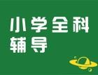 北京小学课外辅导 四年级语文 五年级语文一对一