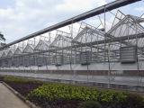 温室大棚专业设计建造,甜瓜育苗温室建造