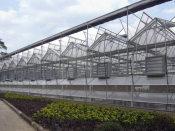 温室大棚认准信和温室工程——专业畜牧温室建设