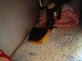 女寝室有下铺,紧邻安发桥,抚顺街,安升街,北安街,经纬街