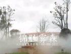 攀枝花人工造雾设备厂家-喷雾降温,喷雾加湿冷雾景观