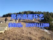 园林景观哪家公司强_河南园林景观厂家