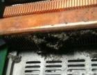 姜堰城区 笔记本清灰 笔记本除尘 散热 高温