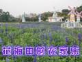 2017深圳周边人气最旺农家乐给力推荐松湖生态园游玩介绍