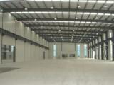 个人开发区一楼2300平米高10米仓库