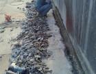 清远市基础加固,清城区房屋柱梁灌浆加固工程,清新区松木桩加固