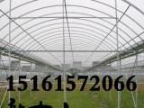 江苏南京江宁花卉 养殖 蔬菜大棚钢管连栋大棚骨架 蔬菜镀锌管