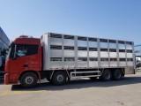 9.6米雏禽运输车价格