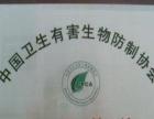 10年上海各区灭鼠、灭蟑螂、灭白蚁、老鼠臭虫等