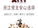 杭州寧波臺州溫州嘉興金華,寵物去世火化殯葬24h營業