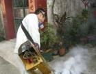 塘厦灭白蚁、杀蟑螂、灭老鼠、杀虫公司、除虫、灭蚊蝇