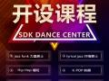 暑期!高能燃脂训练营-SDK专业舞蹈培训班