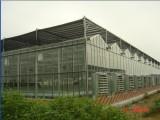 智能温室大棚造价是多少_智能养殖温室建设